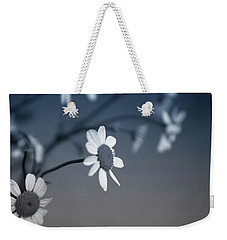Indigo Daisies 1- Art By Linda Woods Weekender Tote Bag