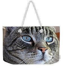 Indy With Border Weekender Tote Bag