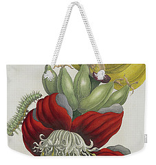 Inflorescence Of Banana, 1705 Weekender Tote Bag by Maria Sibylla Graff Merian