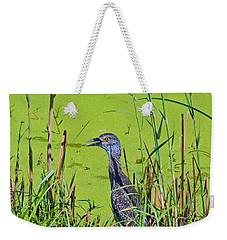 Inmature Black Crowned Heron. Weekender Tote Bag