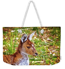 Weekender Tote Bag featuring the photograph Inner Peace, Yanchep National Park by Dave Catley