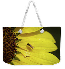 A Bug's Life Weekender Tote Bag by Nikki McInnes