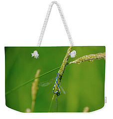 Weekender Tote Bag featuring the photograph Insect On Straw, May 2016.  by Leif Sohlman