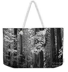Inside The Groves Of The Redwoods Weekender Tote Bag