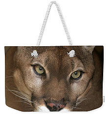 Intense Cougar Weekender Tote Bag