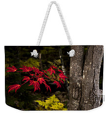 Weekender Tote Bag featuring the photograph Intensity by Chad Dutson