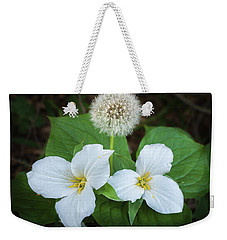 Weekender Tote Bag featuring the photograph Interloper by Bill Pevlor