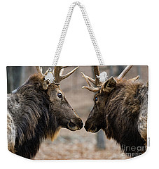 Weekender Tote Bag featuring the photograph Intimidation by Andrea Silies