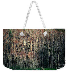 Into The Forest  Weekender Tote Bag by Christy Ricafrente