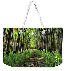 Weekender Tote Bag featuring the photograph Into The Forest by DJ Florek