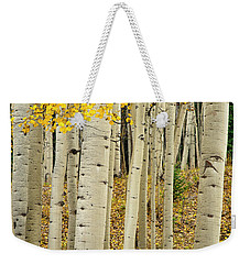 Weekender Tote Bag featuring the photograph Into The Forest by Gary Lengyel
