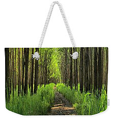 Weekender Tote Bag featuring the photograph Into The Forest I Go by DJ Florek