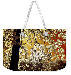Weekender Tote Bag featuring the photograph Into The Golden Sun by Linda Unger