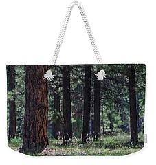 Into The Light There Be Shadows Weekender Tote Bag