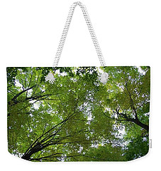 Weekender Tote Bag featuring the photograph Into The Trees by Michael  TMAD Finney