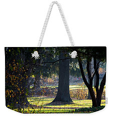 Intrigued By The Light Weekender Tote Bag