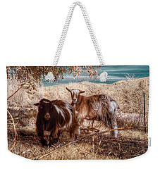Weekender Tote Bag featuring the photograph Invisible Lives by Chriss Pagani