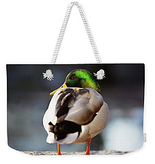 Weekender Tote Bag featuring the photograph Iridescense by Sue Collura