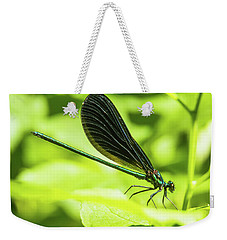Iridescent Green And Blue Dragonfly Profile Weekender Tote Bag