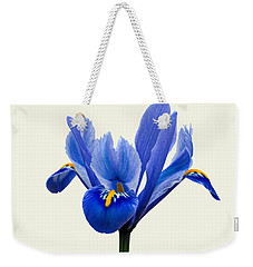Iris Reticulata, Cream Background Weekender Tote Bag