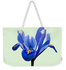 Iris Reticulata, Green Background Weekender Tote Bag