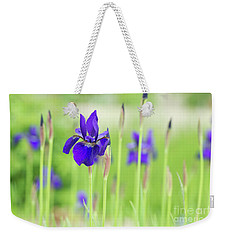 Iris Sibirica Caesars Brother Weekender Tote Bag