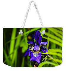 Weekender Tote Bag featuring the photograph Iris Versicolor by Mark Myhaver