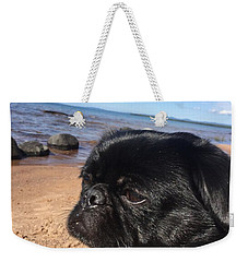Weekender Tote Bag featuring the photograph Is This My Good Side? by Paula Brown
