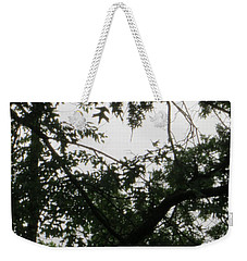 Is This My Heart? Weekender Tote Bag by Sonali Gangane
