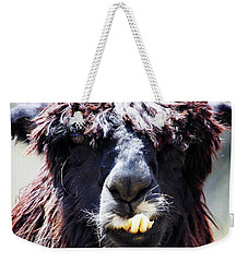 Weekender Tote Bag featuring the photograph Is Your Mama A Llama? by Anthony Jones