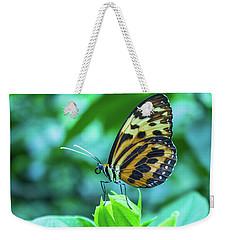 Ismenius Butterfly Weekender Tote Bag by Steven Parker