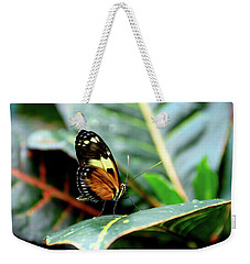 Ismenius Tiger Butterfly-2 Weekender Tote Bag