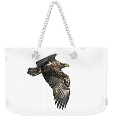 Weekender Tote Bag featuring the photograph Isolated Eagle 2017-2 by Thomas Young