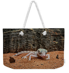 Weekender Tote Bag featuring the photograph Israeli Sand Gecko - 1 by Nikolyn McDonald