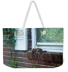 Weekender Tote Bag featuring the photograph It Is Cool Here In The Shade by Denise Fulmer