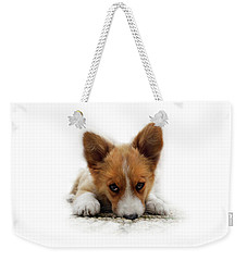 Weekender Tote Bag featuring the photograph It Wasn't Me Corgi by Mariella Wassing