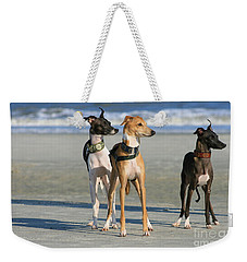 Italian Greyhounds On The Beach Weekender Tote Bag