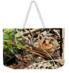 It's A Baby Woodcock Weekender Tote Bag
