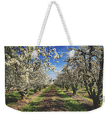 Weekender Tote Bag featuring the photograph It's A New Day by Laurie Search