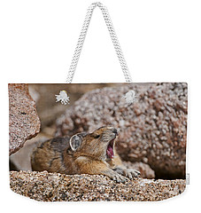 Weekender Tote Bag featuring the photograph It's Been A Long Day by Gary Lengyel