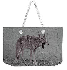 It's Been A Rough Day Weekender Tote Bag by Anne Rodkin