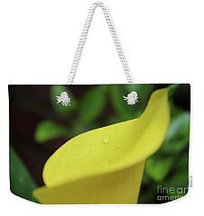Its In The Details  Weekender Tote Bag