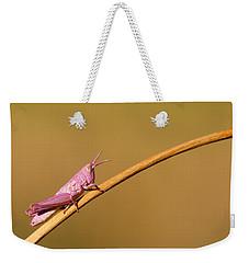 It's Not Easy Being Pink Weekender Tote Bag by Roeselien Raimond
