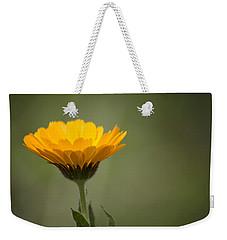 It's Spring Weekender Tote Bag