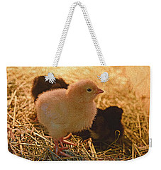 Itty Bitties Weekender Tote Bag