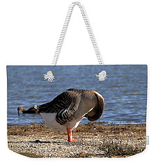Iv Got An Itch Weekender Tote Bag