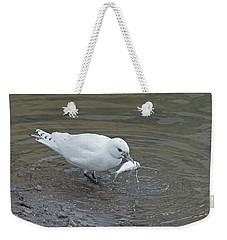Ivory Gull #2 Weekender Tote Bag