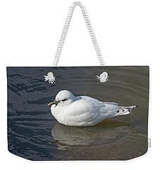 Ivory Gull Weekender Tote Bag