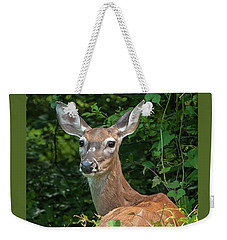 Ivy League Doe Weekender Tote Bag