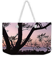 Weekender Tote Bag featuring the photograph Jacaranda Silhouette by Rona Black